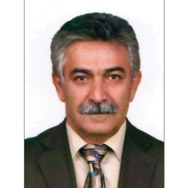 دکتر سید احمد موسویان