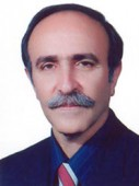 دکتر محمد ناصر تیمور زاده