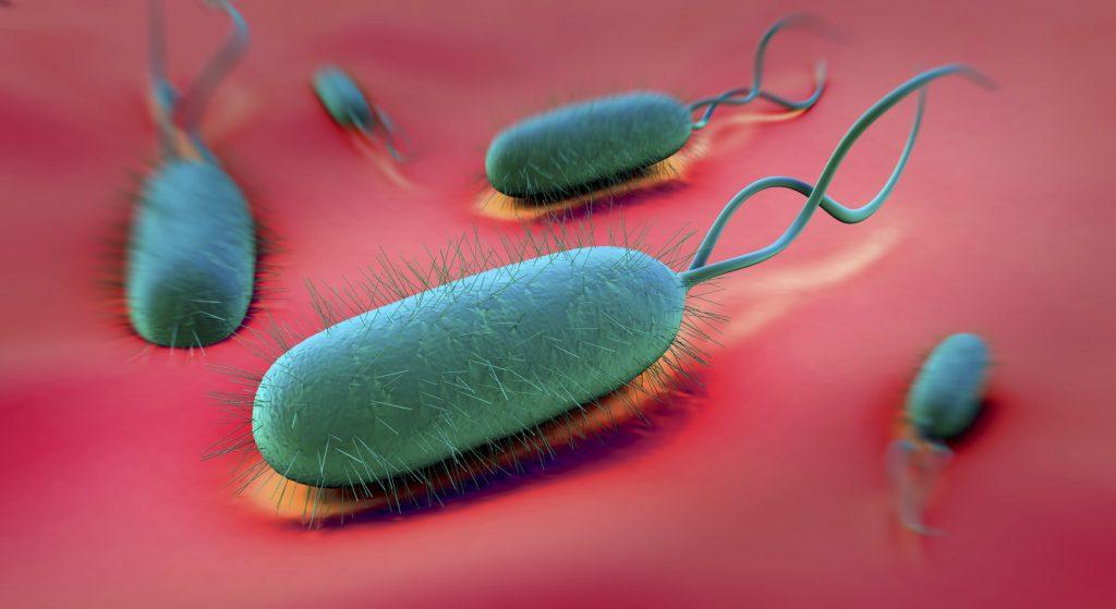 گاستریت - التهاب شدید معده
