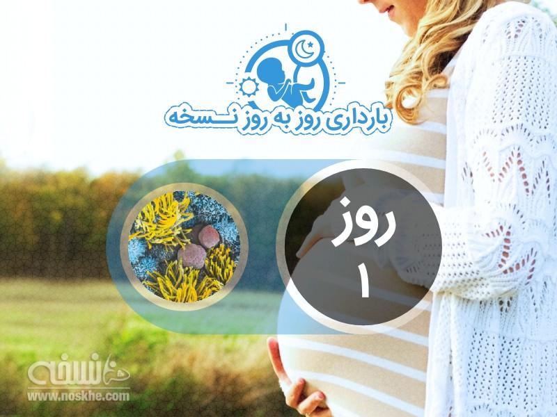 روز اول بارداری