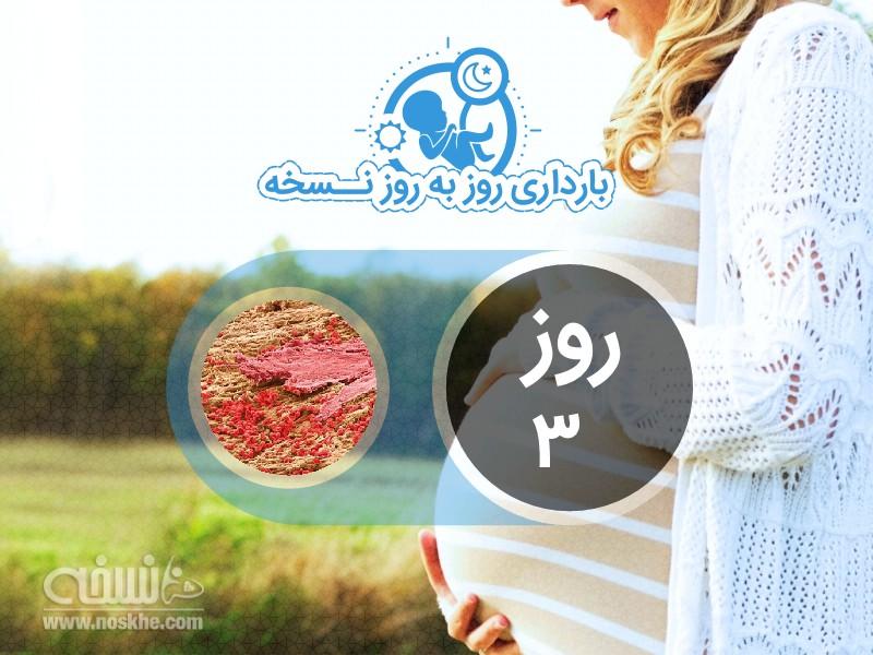 روز سوم بارداری