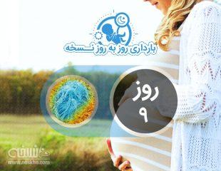 روز نهم بارداری