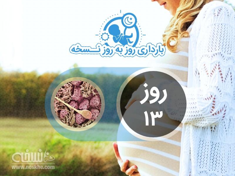 روز سیزدهم بارداری