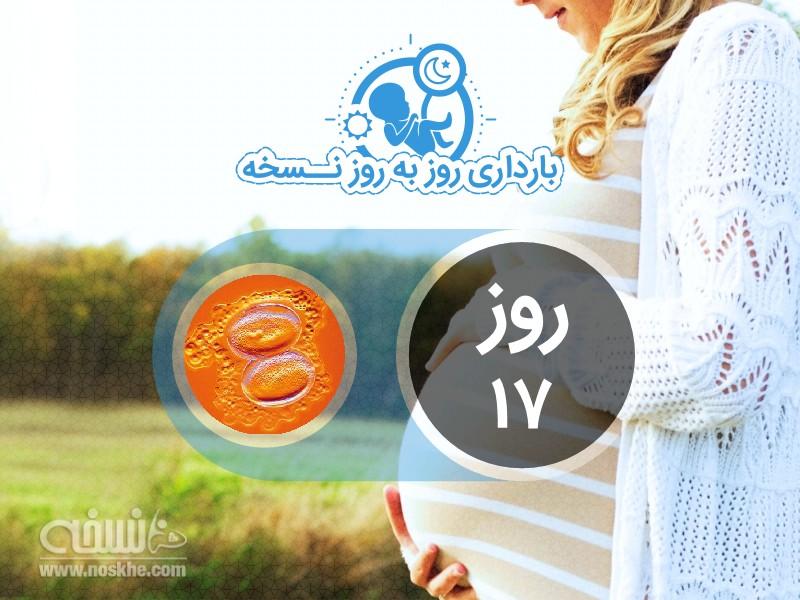 روز هفدهم بارداری
