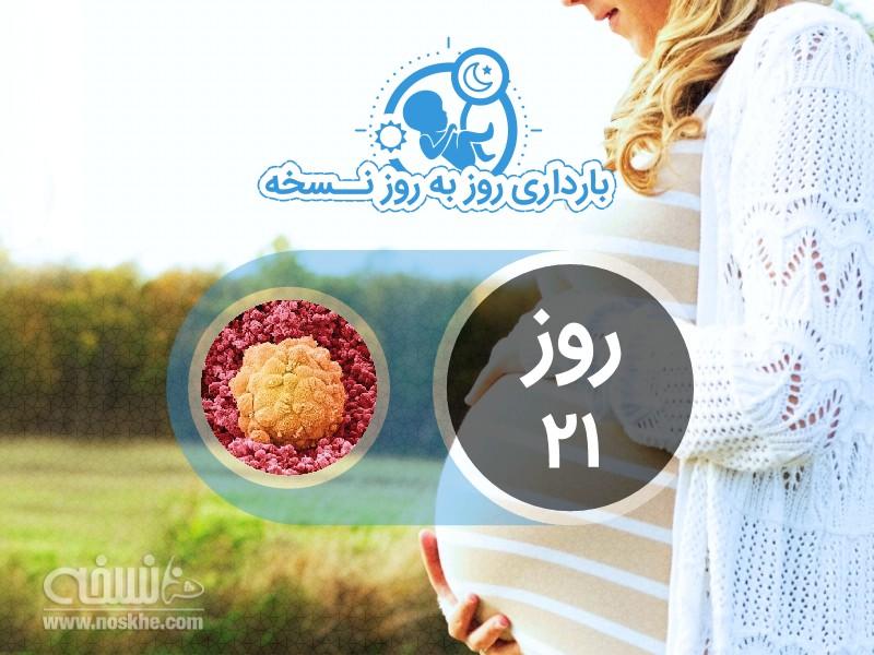 روز بیست و یکم بارداری
