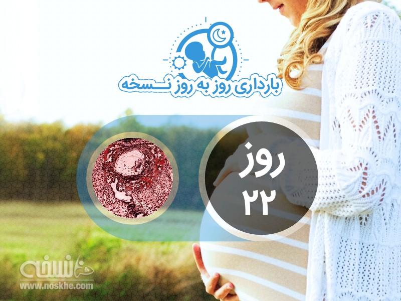 روز بیست و دوم بارداری