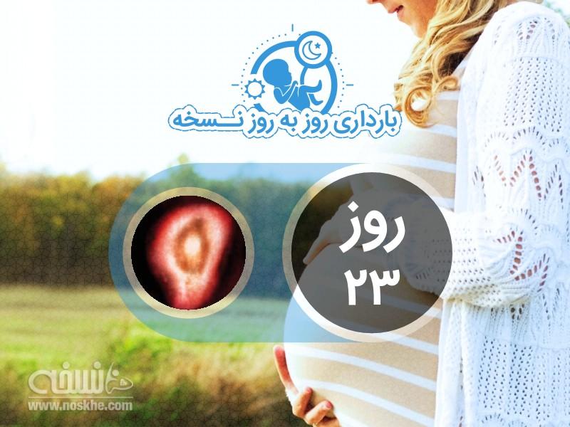 روز بیست و سوم بارداری