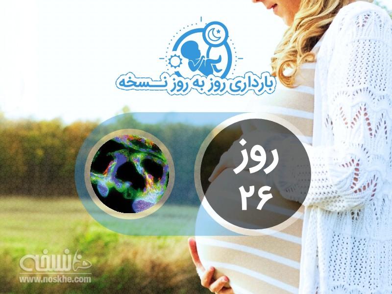 روز بیست و ششم بارداری