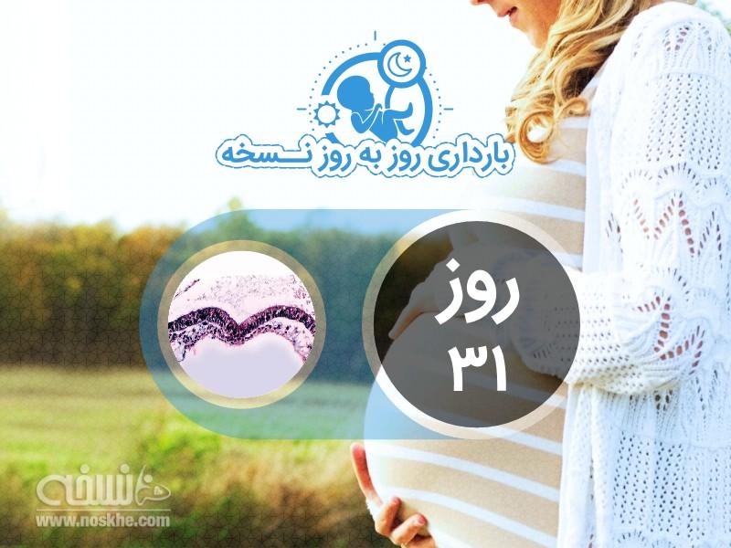 روز سی و یکم بارداری
