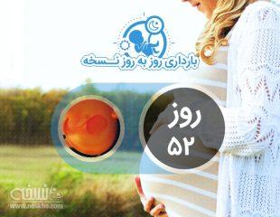 روز پنجاه و دوم بارداری