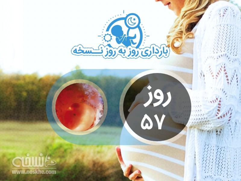 روز پنجاه و هفتم بارداری