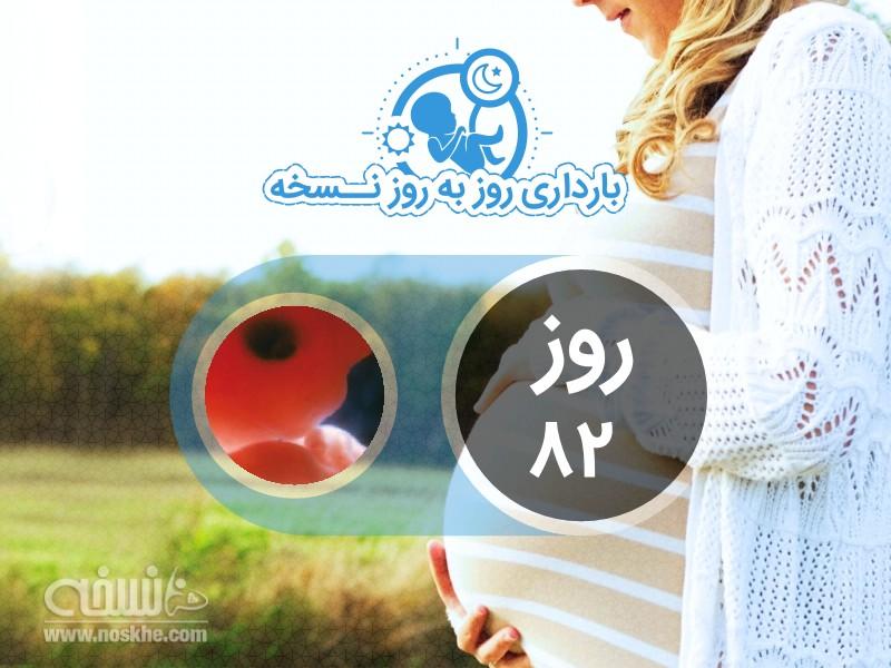 روز هشتاد و دوم بارداری