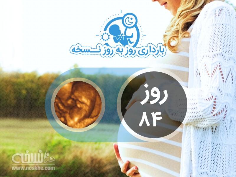روز هشتاد و چهارم بارداری