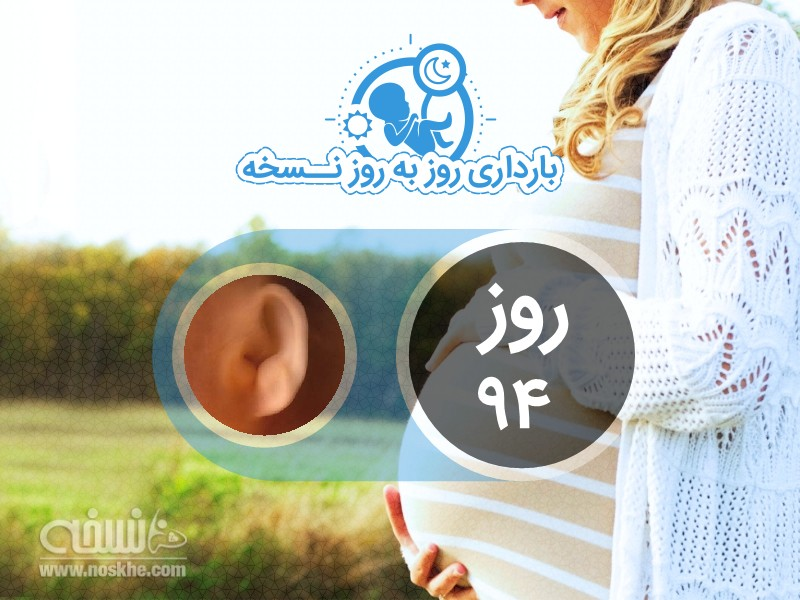 روز نود و چهارم بارداری