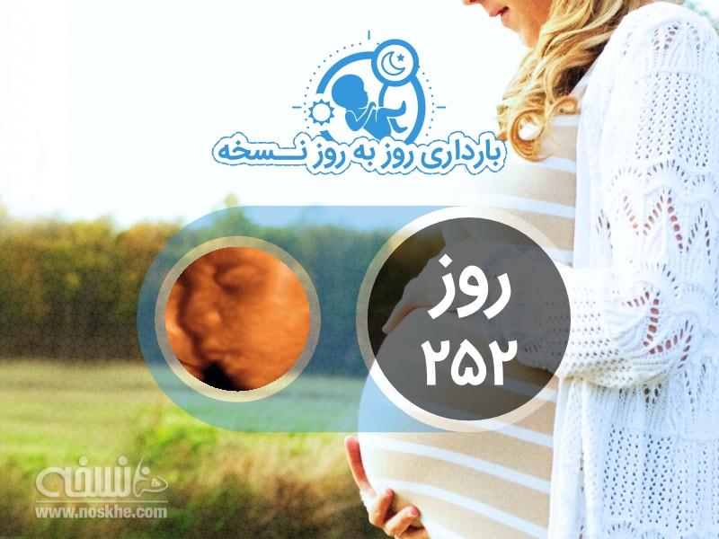روز دویست و پنجاه و دوم بارداری