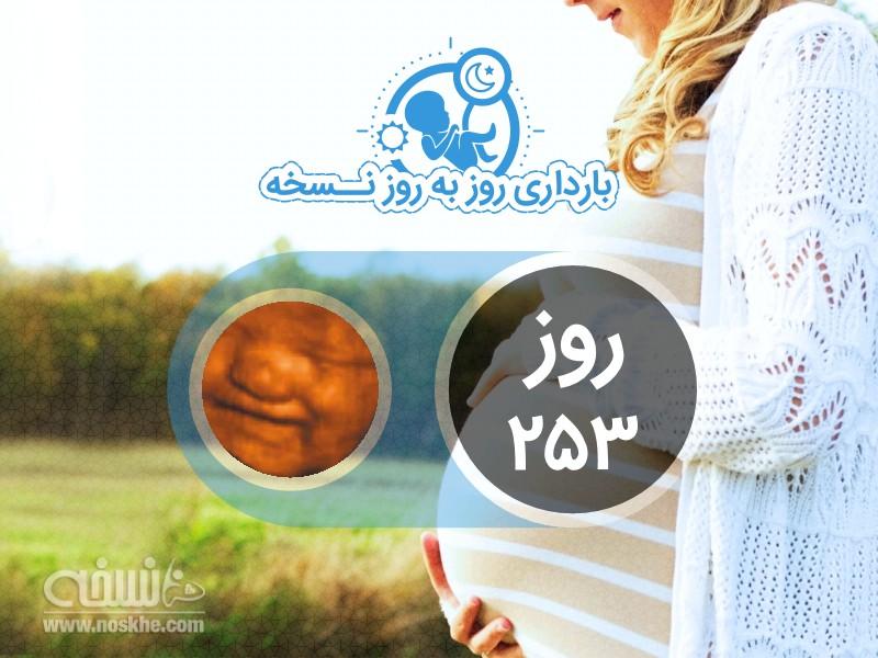 روز دویست و پنجاه و سوم بارداری