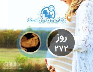 روز دویست و هفتاد و دوم بارداری