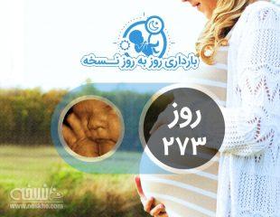 روز دویست و هفتاد و سوم بارداری