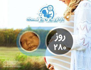 روز دویست و هشتادم بارداری