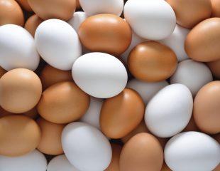 ویتامین ب 12 و تخم مرغ