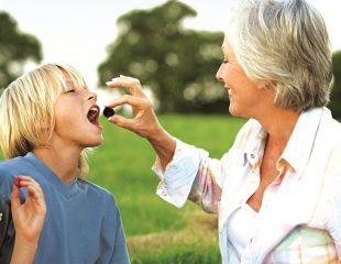 فواید مصرف آلوسیاه خشک