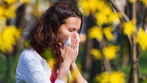 آلرژی به گرده ابروسیا و حساسیت پاییزی