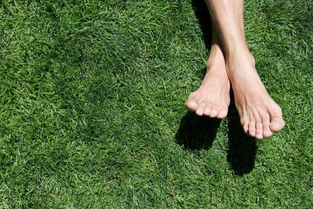 پای تورف