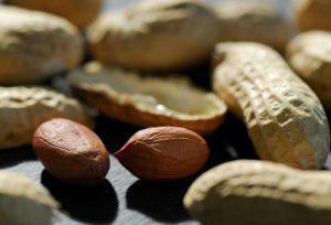 آشنایی با مواد غذایی آلرژی زا