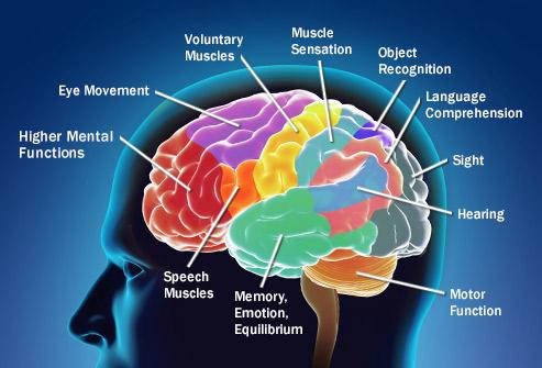 چگونه سرطان روی مغز اثر می گذارد