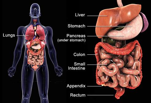این تومورها در کجا شکل می گیرند؟