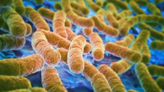 مواردی که باید در مورد عفونت ها بدانید