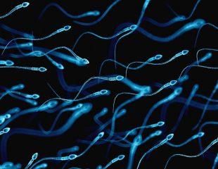 سوالات متداول و مکرر در مورد اسپرم