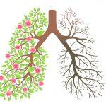 15 مواد غذایی که برای سلامتی ریه های شما ضروری هستند