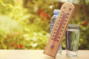 با سلاطین مقابله با گرمای تابستان بیشتر آشنا شوید!