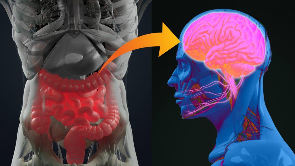 3 . مکمل های پروبیوتیک اثرات و علایم برخی از بیماری های روانی را کاهش میدهد