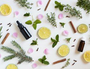 18 روغن گیاهی که برای کاهش اضطراب و استرس (بخش دوم)