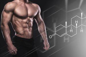 8 ماده غذایی مقوی برای تقویت و افزایش هورمون تستوسترون