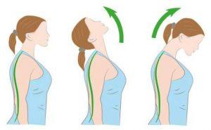 2 . خم کردن گردن به بالا و پایین