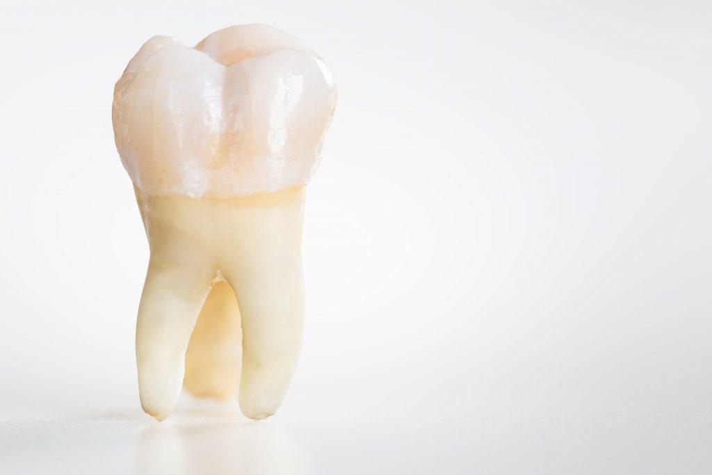 10 حقیقتی که تاکنون درباره دهان و دندان های خود نمی دانستید