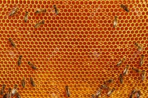 10 مزیت شگفت انگیز و باور نکردنی عسل طبیعی